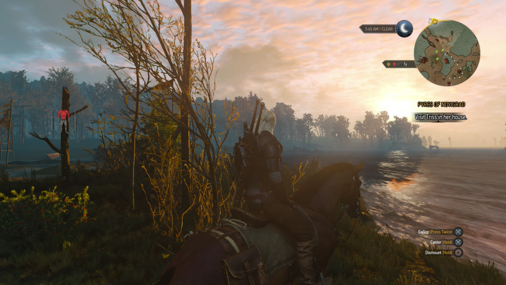 Witcher 3 Screen 3 CK