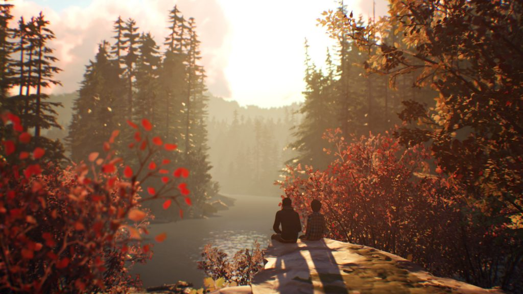 Life is Strange 2 Wald Screenshot